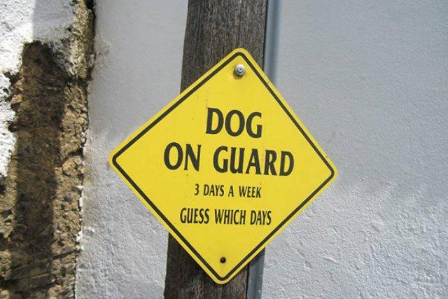 Weird Signs (40 pics)