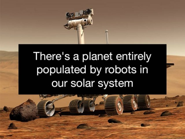 Surprising Facts (24 pics)