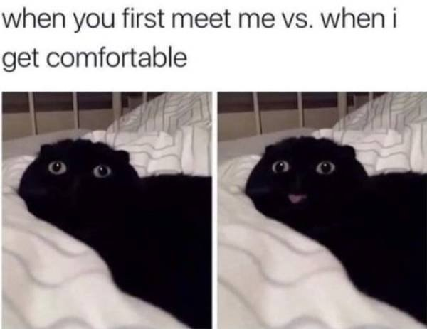 Wholesome Memes (41 pics)