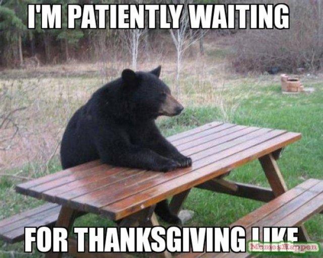 Thanksgiving Memes (34 pics)