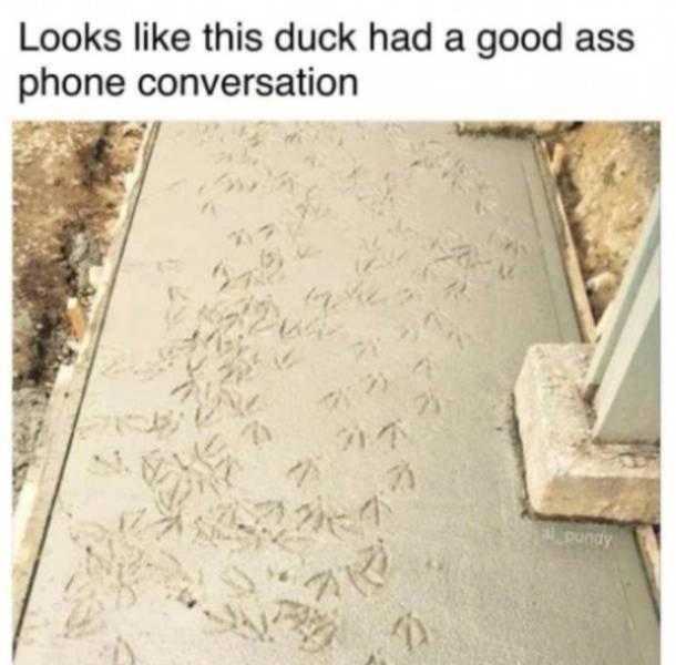 Random Funny Pictures (59 pics)