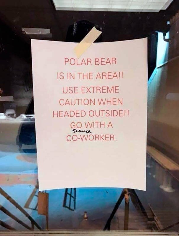 Funny Coworkers (25 pics)