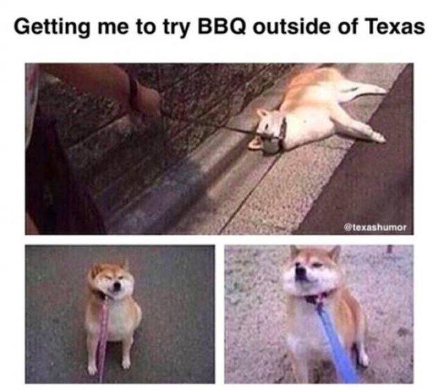 Texas Memes (53 pics)