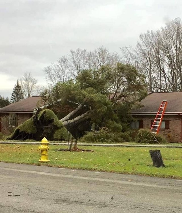 Bad Day (59 pics)