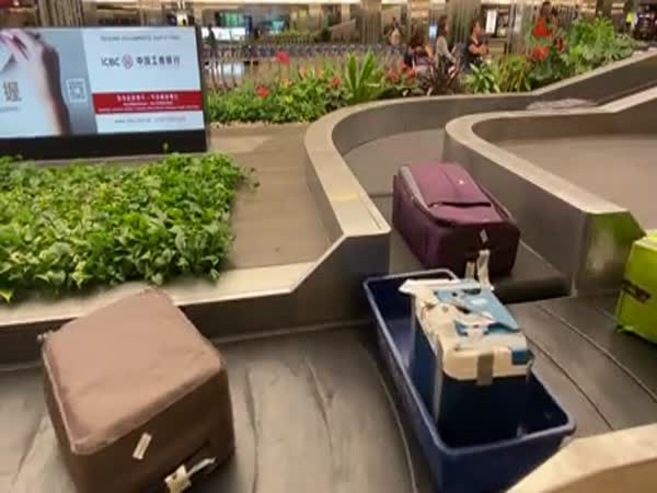 Watching The Baggage Arrive At Singapore's Changi Airport