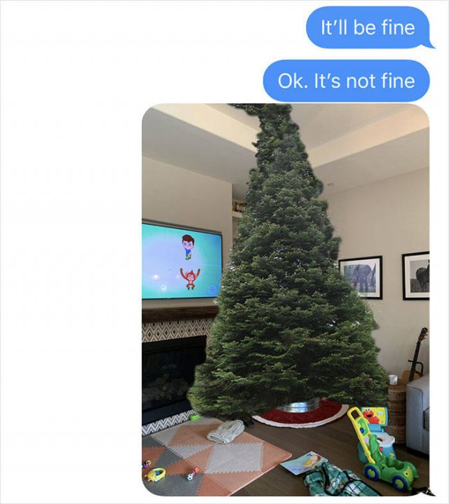 Dad's Christmas Tree Shopping Gone Wrong (7 pics)