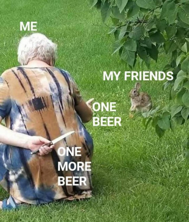 Alcohol Memes Thta Will Make You Smile (31 pics)