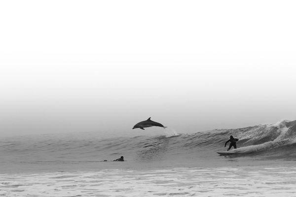 Catch The Moment (35 pics)