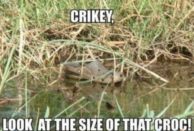 Crocs Memes (30 pics)
