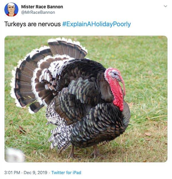 Poor Way To Explain Holidays (25 pics)
