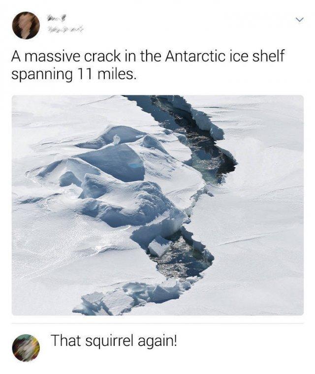 Smart Comments (14 pics)