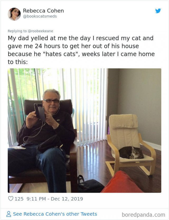 People Who Didn't Want Pets (33 pics)