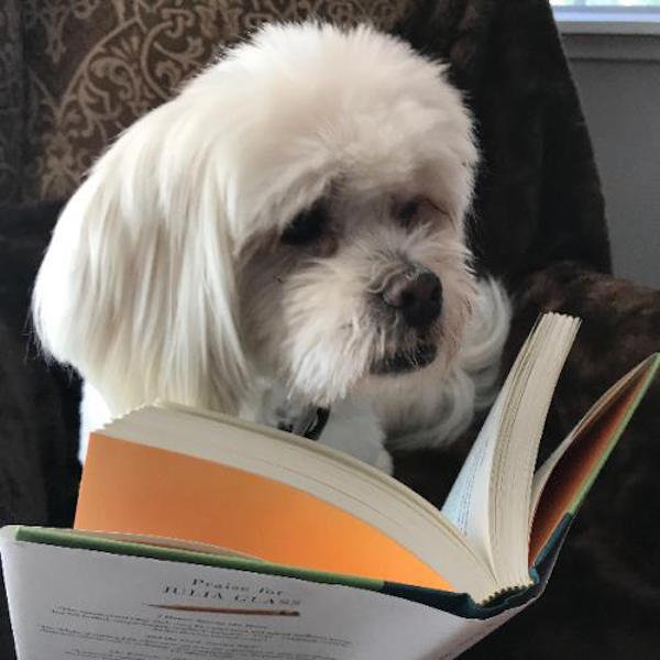 Sometimes Dogs Read Books (35 pics)