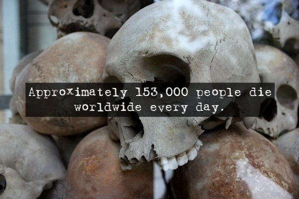 Scary Facts (14 pics)