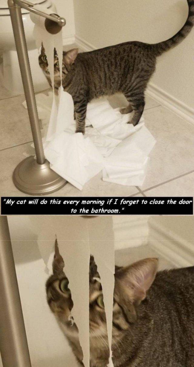 Bad Days Happen (52 pics)