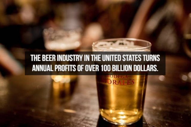 Beer Facts (20 pics)