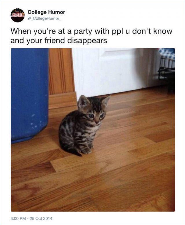Secrets Of Introverts (22 pics)