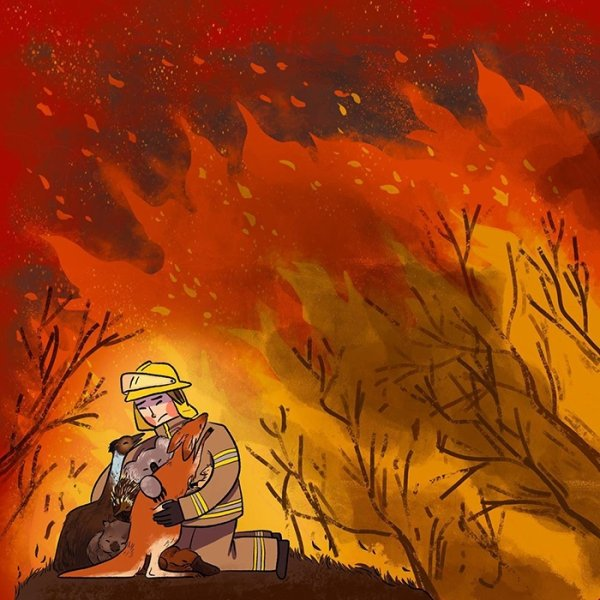 Australian Bushfires: Artists Share Support By Their Works (26 pics)