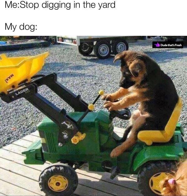 Random Funny Memes (26 pics)