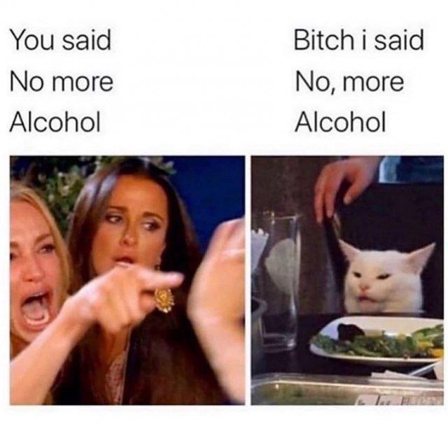 Drunk Memes (26 pics)
