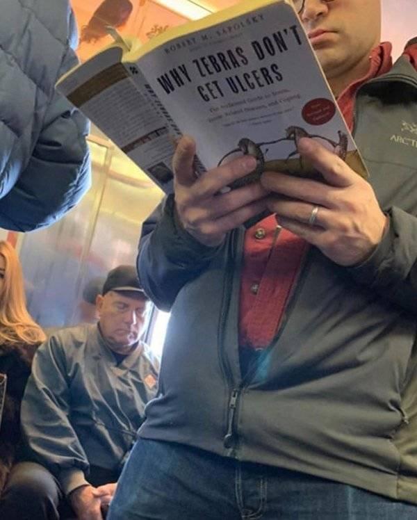 People Reading Interesting Books (44 pics)