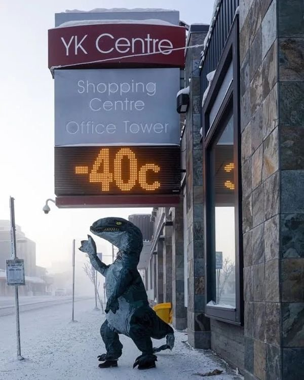 Only In Canada (24 pics)