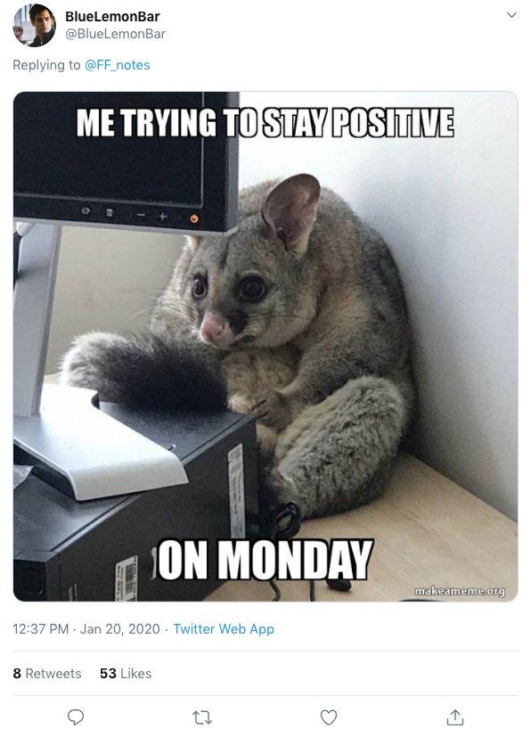 Office Possum Story (18 pics)