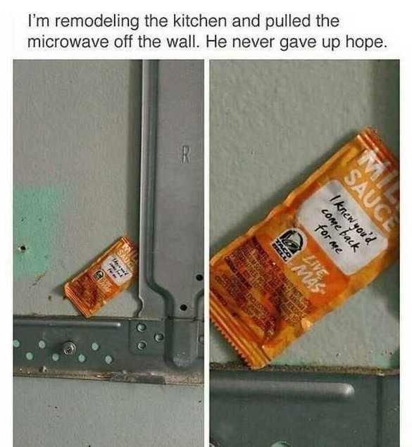 What You May Find In Your Home (28 pics)