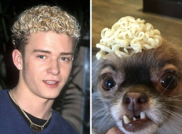Who Wore It Best? (30 pics)