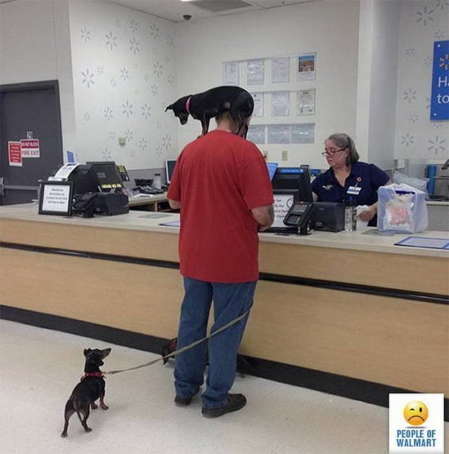 People Of Walmart (42 pics)