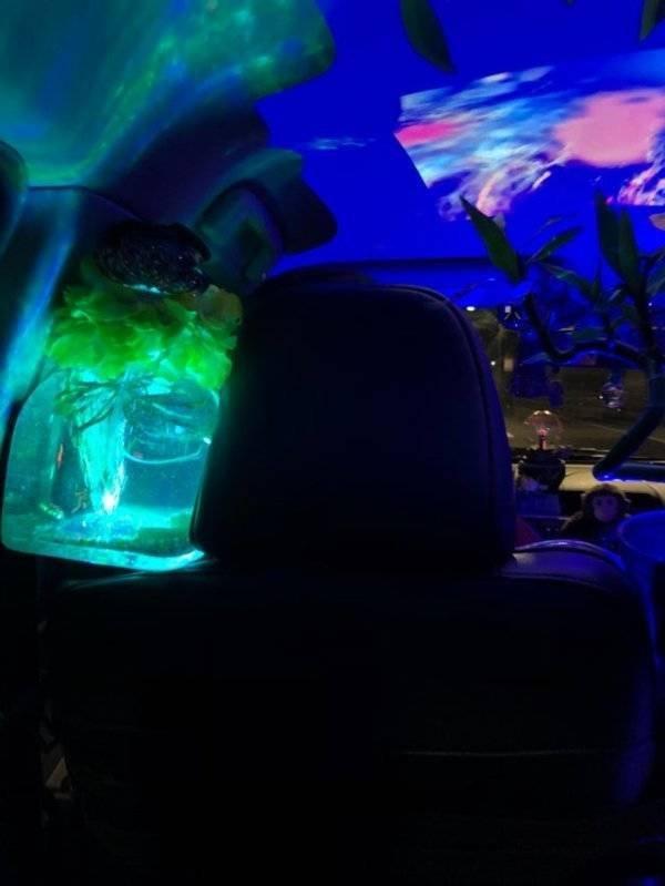 Unusual Uber Drivers (24 pics)