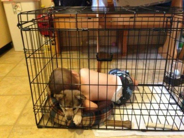 Real Parenting (17 pics)
