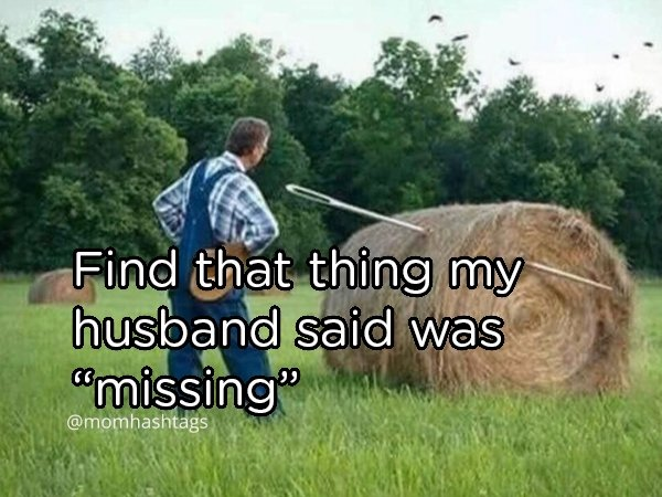 Memes About Married Life (35 pics)