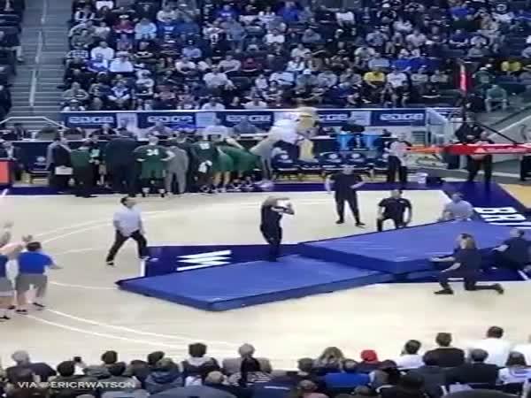 Great Mascot Performance