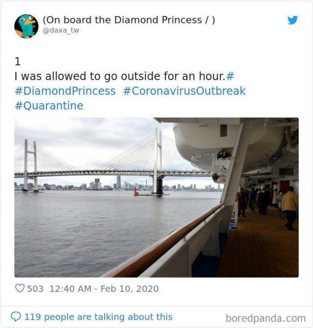 """Prisoners Of Coronavirus Ship """"Diamond Princess"""" (31 pics)"""