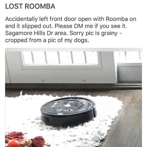 Sometimes Neighbors Act Strange (38 pics)