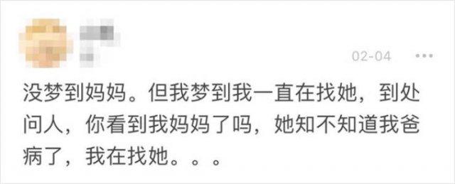 Wuhan's Diary: Girl Writes About Coronavirus Events (18 pics)