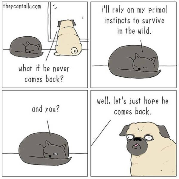 Animal Comics By Jimmy Craig (40 pics)