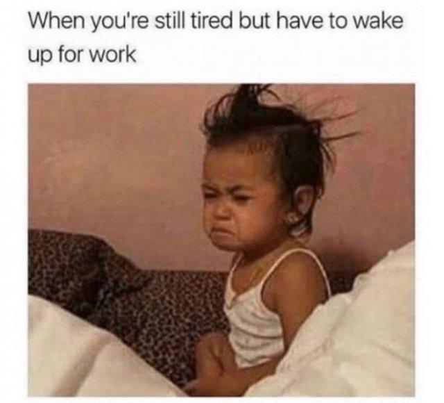Job Memes (24 pics)