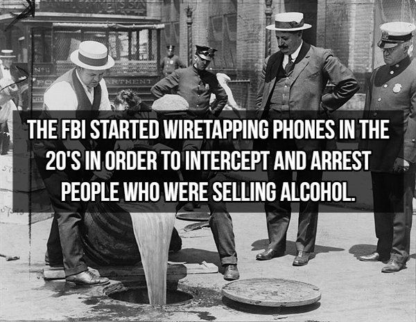FBI Facts (15 pics)