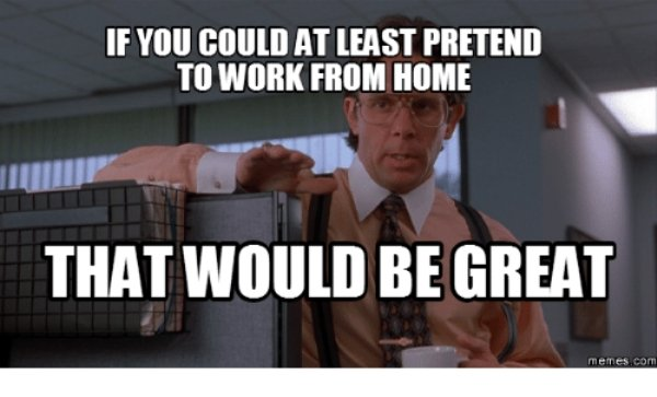 Work From Home Memes (35 pics)