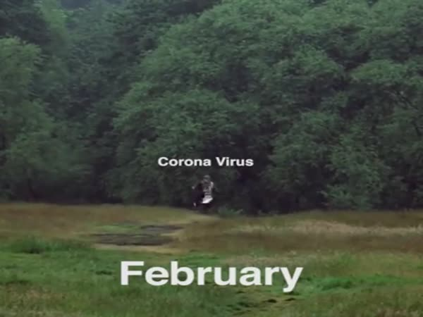 Who Saw The Corona Virus Coming...
