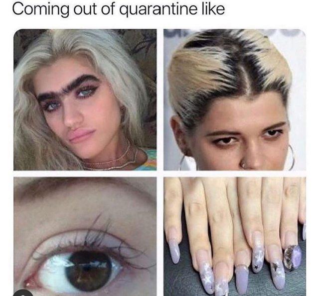 #QuarantineAndChill Tweets (16 pics)