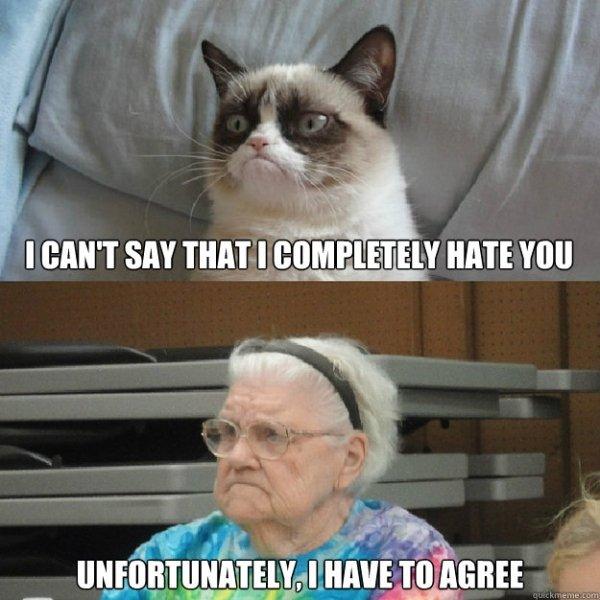 Grandma Memes (34 pics)