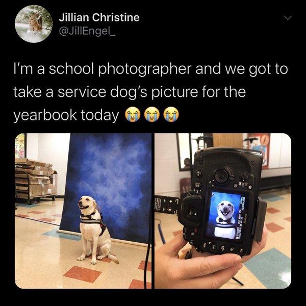 Positive Pictures (25 pics)