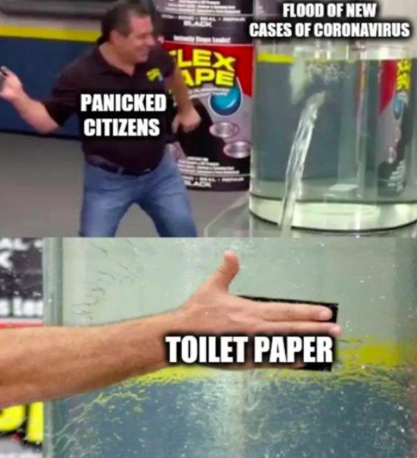 Toilet Paper Memes (34 pics)