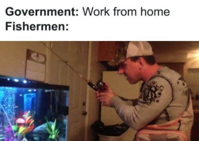 Work From Home Memes (31 pics)