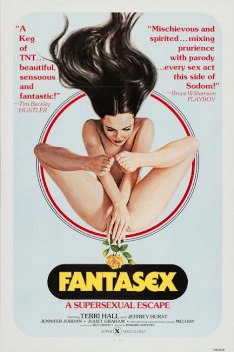 Vintage X-Rated Movie Posters (29 pics)