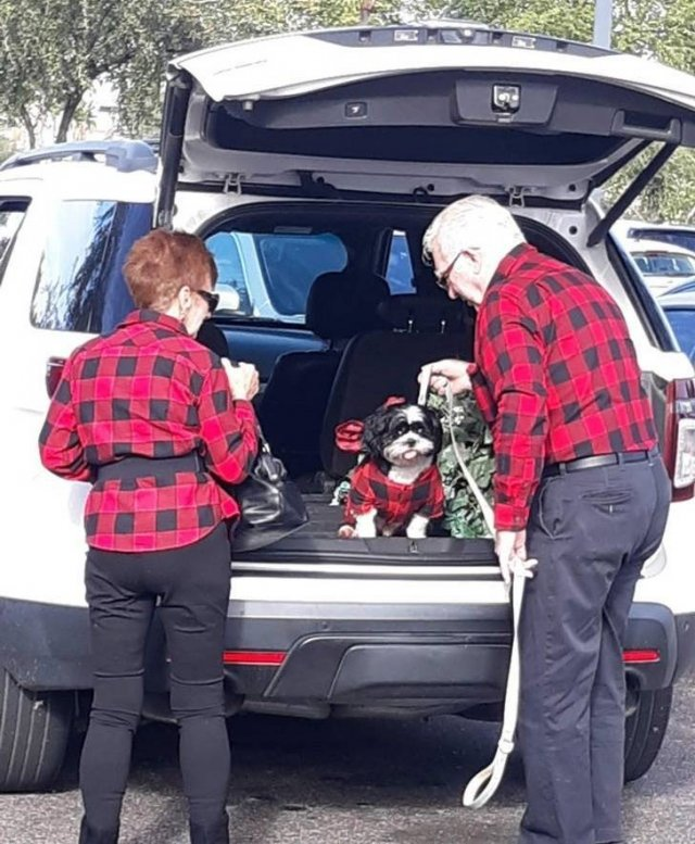 True Love Lives Forever (20 pics)
