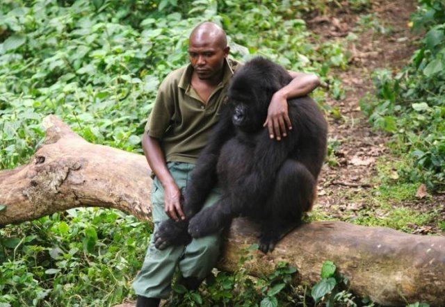 People And Animals Need Each Other (21 pics)